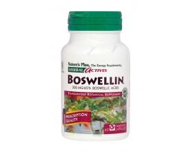 Nature's Plus, Boswellin 300 mg, Συμπλήρωμα Ριτίνης με Αντιφλεμονώδεις Ιδιότητες, Προστατεύει Ιδιαίτερα τις Αρθρώσεις από Εκφυλιστικά Φαινόμενα έπειτα από Παρατεταμένη Φλεγμονή 60 vcaps