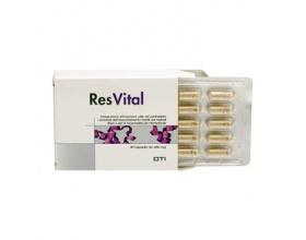 Οti-Hellas Resvital Συμπλήρωμα Διατροφής με Αντιοξειδωτικές Ιδιότητες, 450mg 30caps