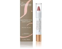 Embryolisse Secret de Maquilleurs Comfort Lip Balm Tinted Pink Nude Ενυδατικό balm 2,5g