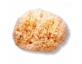 SUAVINEX Παιδικό Φυσικό Σφουγγάρι Medium, 1 τμχ