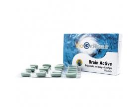 VIOGENESIS Brain Active Συμπλήρωμα διατροφής Ολοκληρωμένη φόρμουλα ενίσχυσης μνήμης με Bacopa Monnieri, φωσφατιδυλική σερίνη και βιταμίνες του συμπλέγματος Β 30 Δισκία