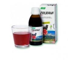 A. Vogel, MOLKOSAN Fruit, Πρεβιοτικό Σκεύασμα με Γεύση Φρούτων για Καθημερινή Χρήση, 200ml
